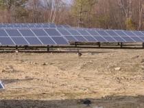 solarfarm-1-of-1