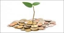 Seed-Money_560x292_frame