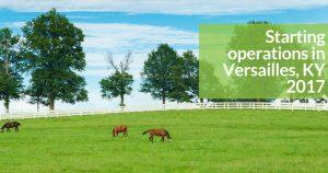 Versailles Kentucky More Than A Bakery