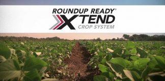 Monsanto Louisiana
