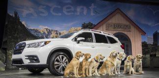 Subaru Ascent Lafayette Indiana